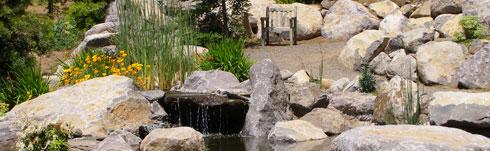 Pond-3-2008